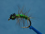 Caddis Nymph page link