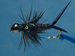 Bead Head Stonefly Nymph flashback image link.